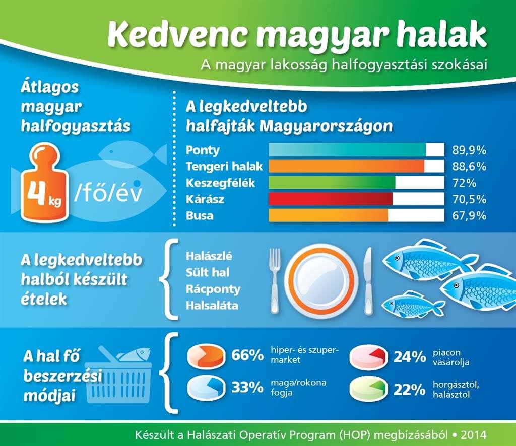 a_ponty_lett_a_kedvenc_infografika