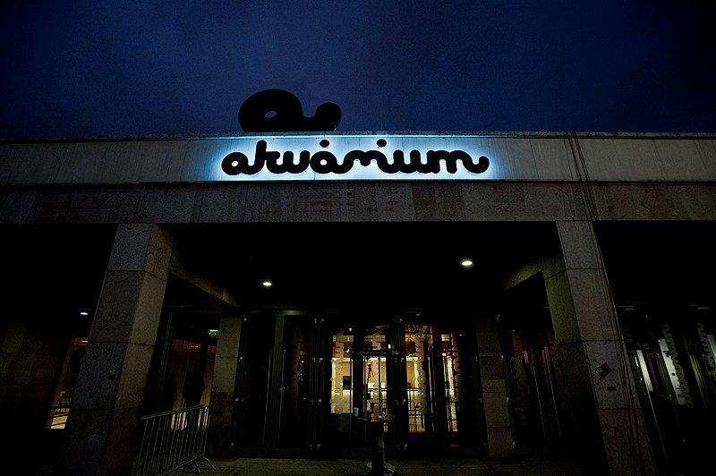 akvarium_klub