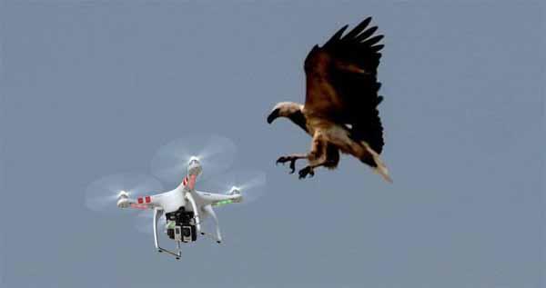 sas-dron-techgiri